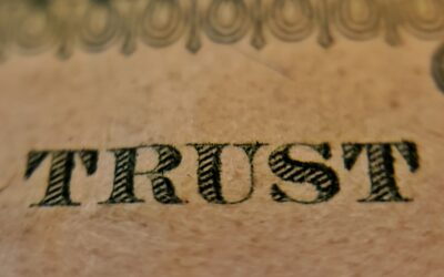 Digital Trust and Belief